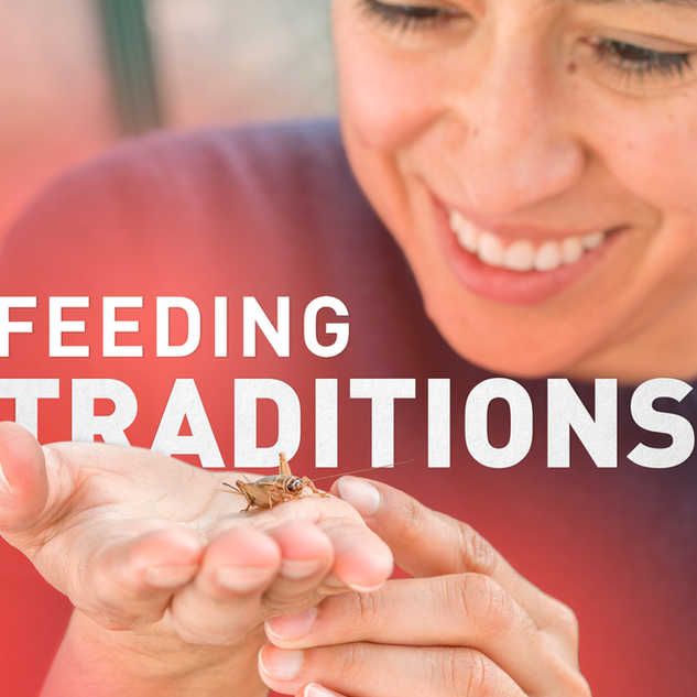 Feeding Traditions