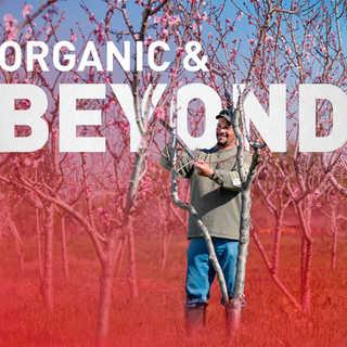 Organic & Beyond