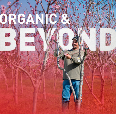 The Food Change: Organic & Beyond