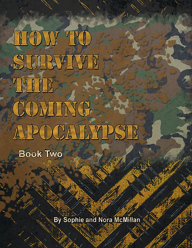 How to Survive the Coming Apocalypse: Book 2 (EPUB version)