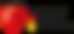 G_DATA_Logo_TIGS.png