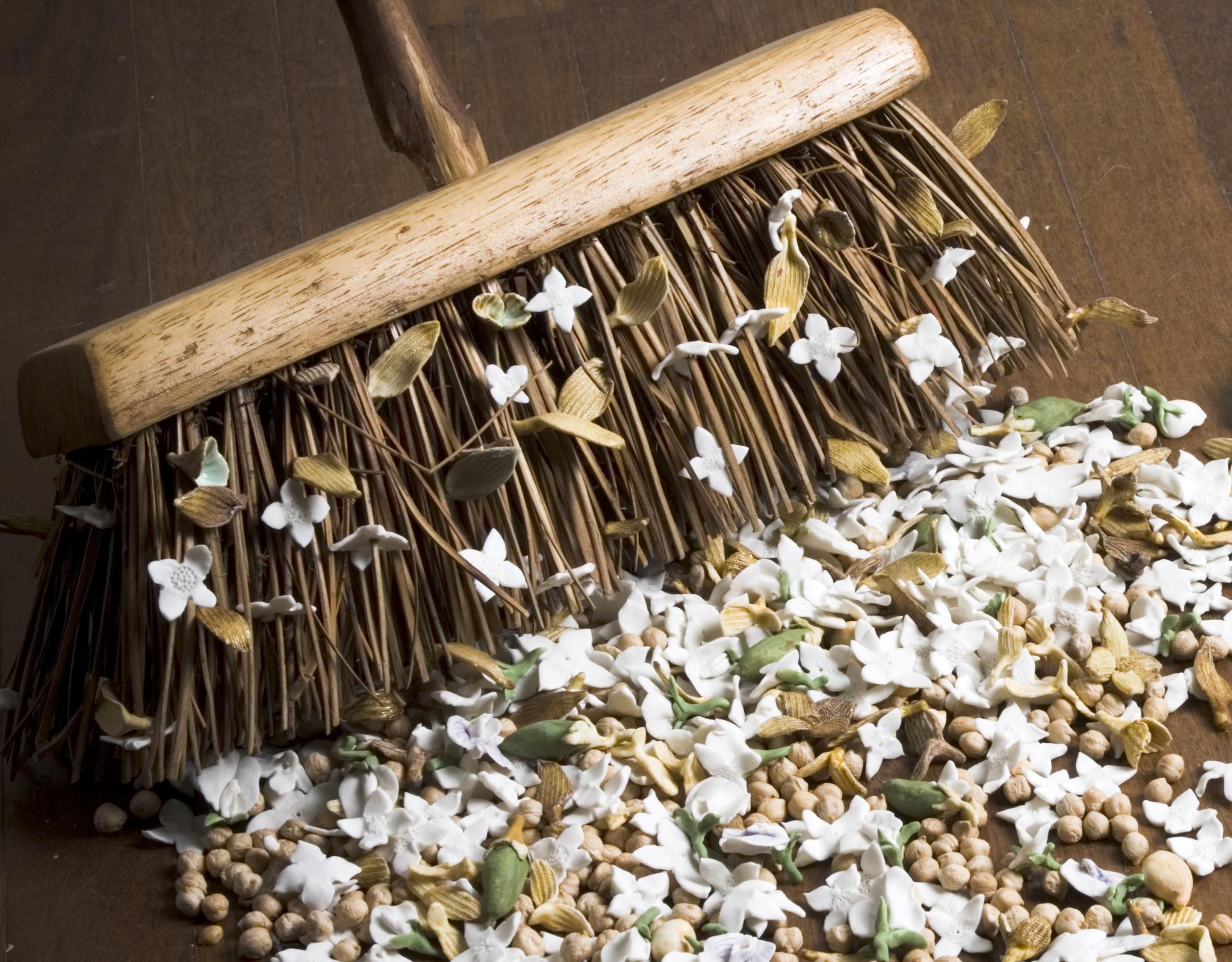 Seed Hunters Broom
