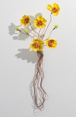 Kapok Flowers_Kakadu series_2018
