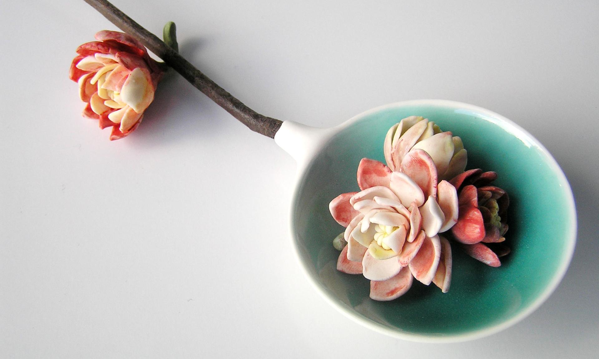 Idiospermum australiense spoon
