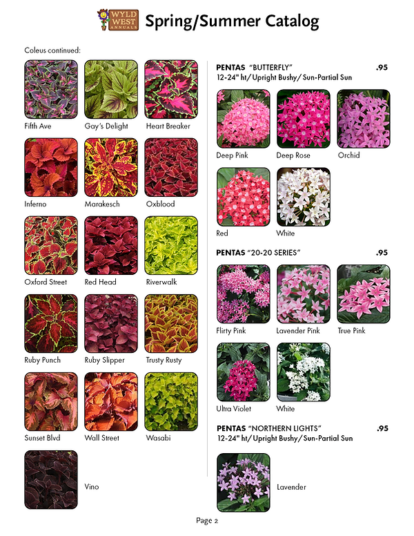 spring catalog 20203.png