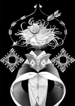 矢車菊――ヤグルマギク