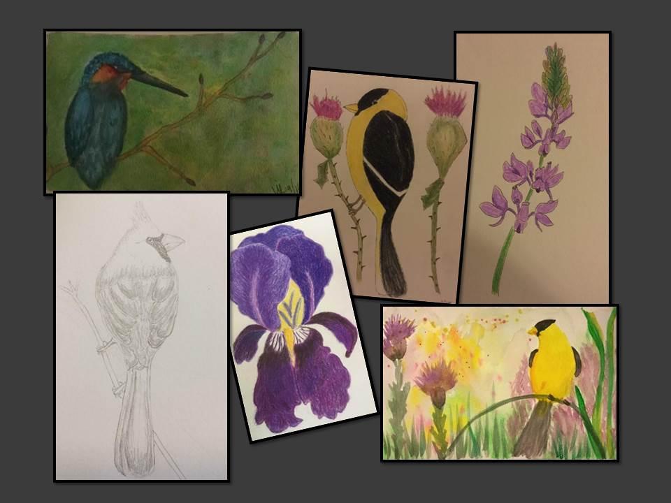 collage of bird art