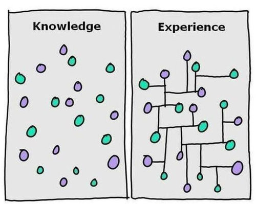 Cartoon explaining the difference between knowledge and experience.