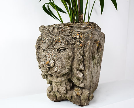 Planter with a lion head