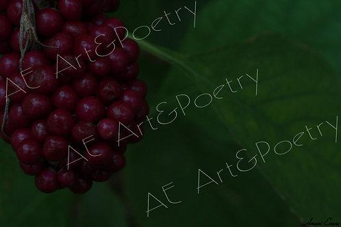 Berry Good: 4