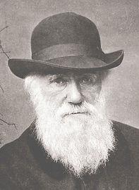 Charles_Darwin_1880_edited.jpg