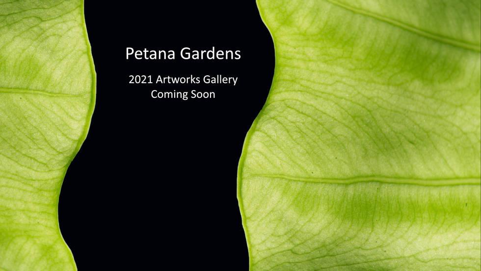 Petana Gardens Gallery Coming soon.jpg
