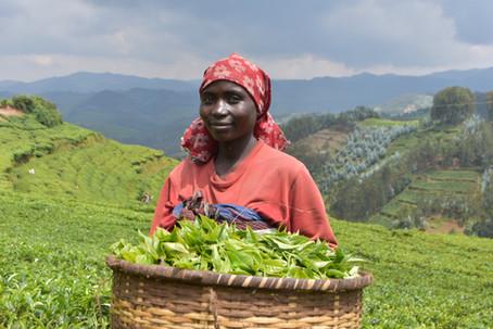 Return to Rwanda