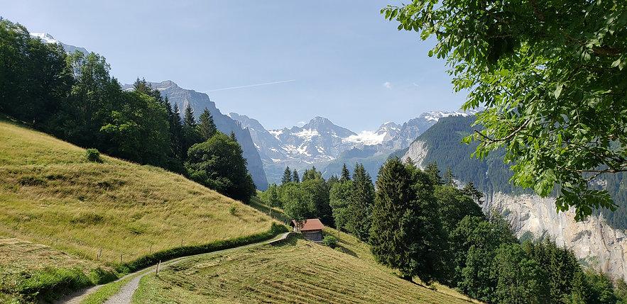 Switzerland Hiking Trail with Alps.jpg