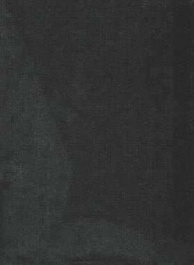 Ashva I (2021, transferencia sobre papel carbón, 30x20cm)