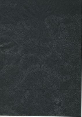 Sin título (2021, transferencia sobre papel carbón, 30x20cm)