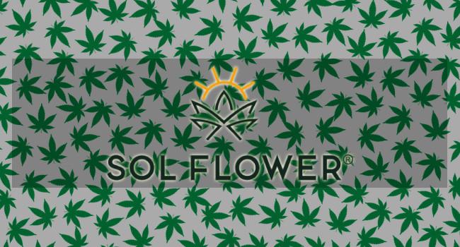SOL FLOWER Dispensary in Chandler, AZ