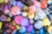 shellscolors.jpg