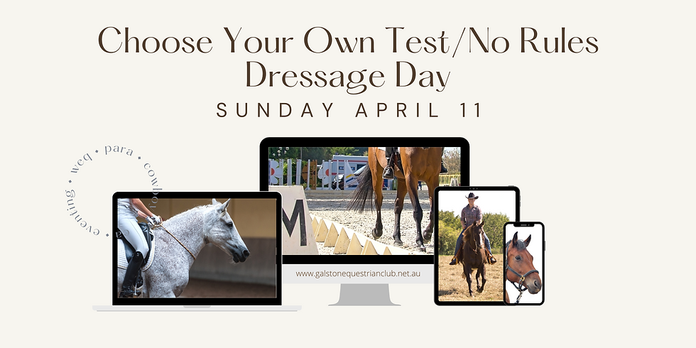 Choose Your Own Test/No Rules Dressage Day