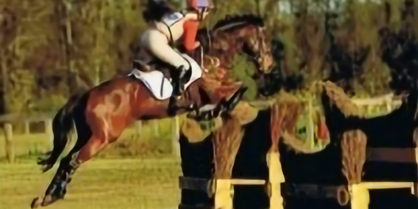 Show Jumping Clinic with Sandy Lucas