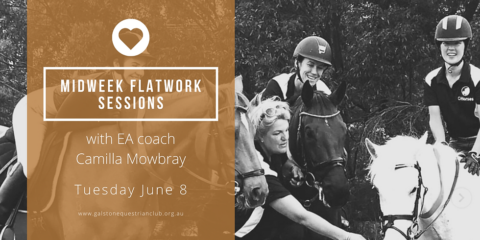 Mid-week flatwork with Camilla Mowbray