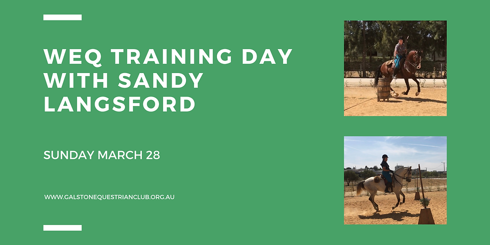 Working Equitation Training Day with Sandy Langsford
