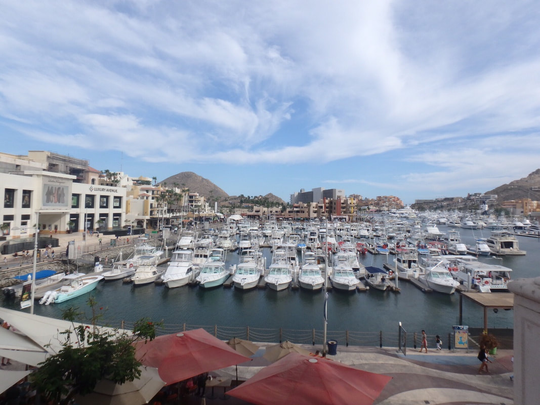 Cabo San Lucas Marina