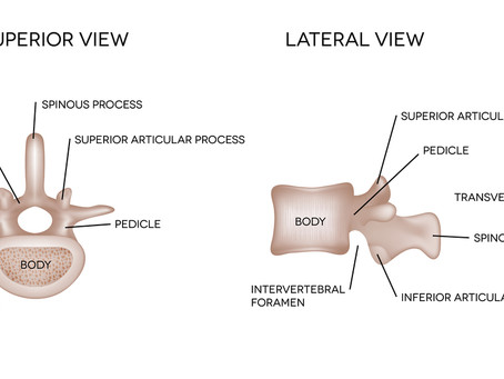 Injury blog: Spinal fracture