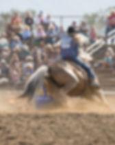 EGilroy Rodeo 8-12-18 (489).jpg