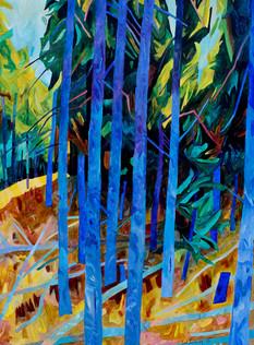 Blue Spruce  *