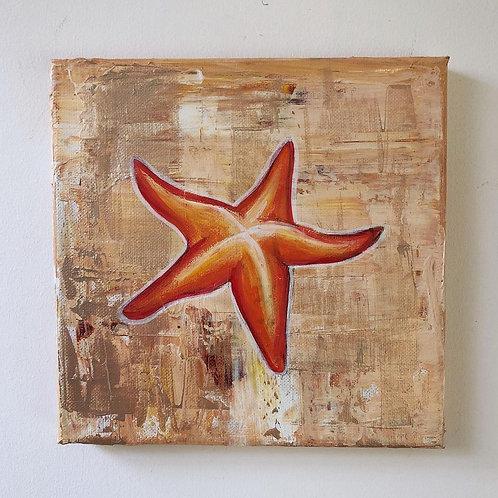 Starfish Mini canvases
