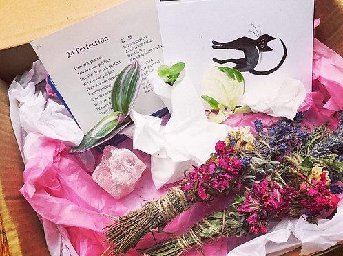 Love Plants Gift box