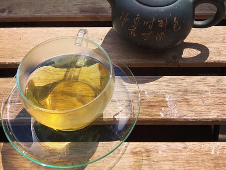 Foraged hand made nettle tea