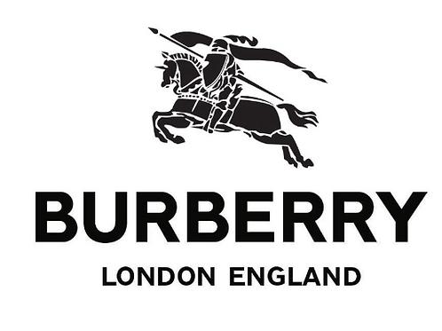 DH Burberry 01_27_2020.zip