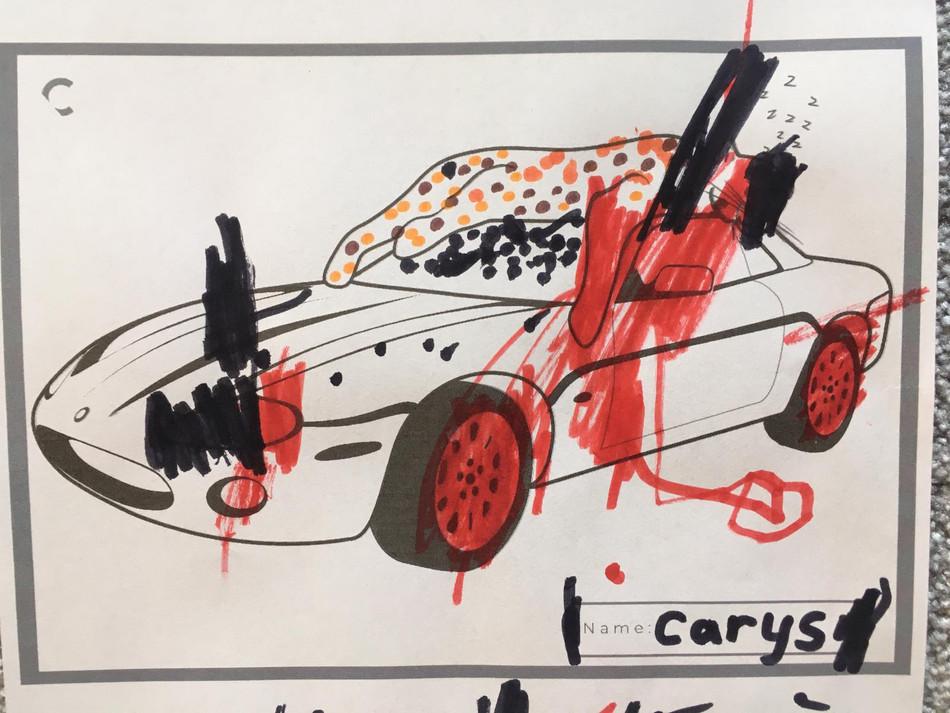 Carys Roberts