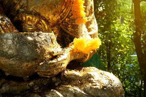 A hand of buddha statue with a golden pl