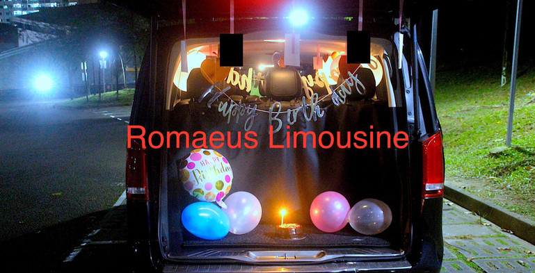 Party Limousine 19.jpg
