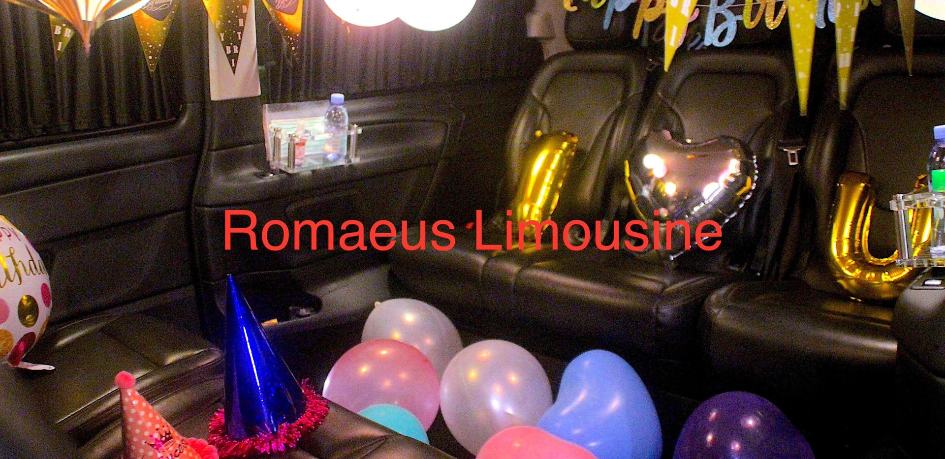 Party Limousine 14.jpg
