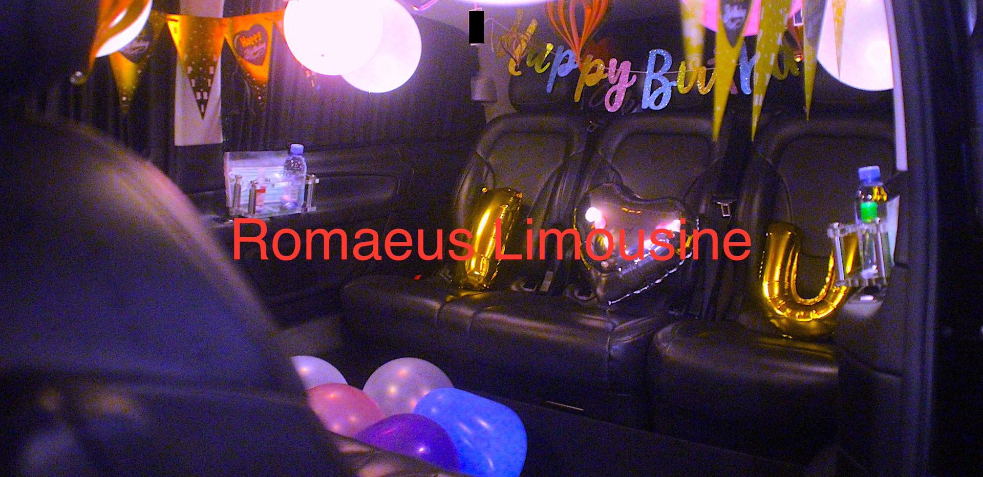 Party Limousine 10.jpg