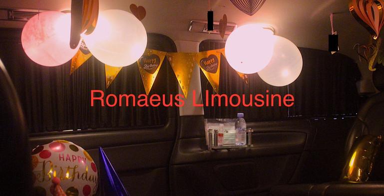 Party Limousine 16.jpg