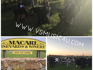 CHECK OUT THE NEW PHOTOS FROM OUR EVENTS THIS WEEK -VSMUSIC4U MUSICIANS STRING DUO, DUO PIANO AND VI
