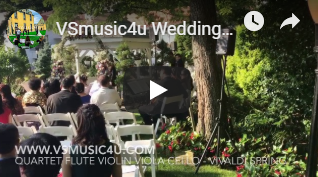 vsmusic4u wedding ceremony and cocktail
