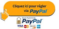 bouton Paypal.png