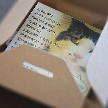 アクセサリーBOX-3.jpg