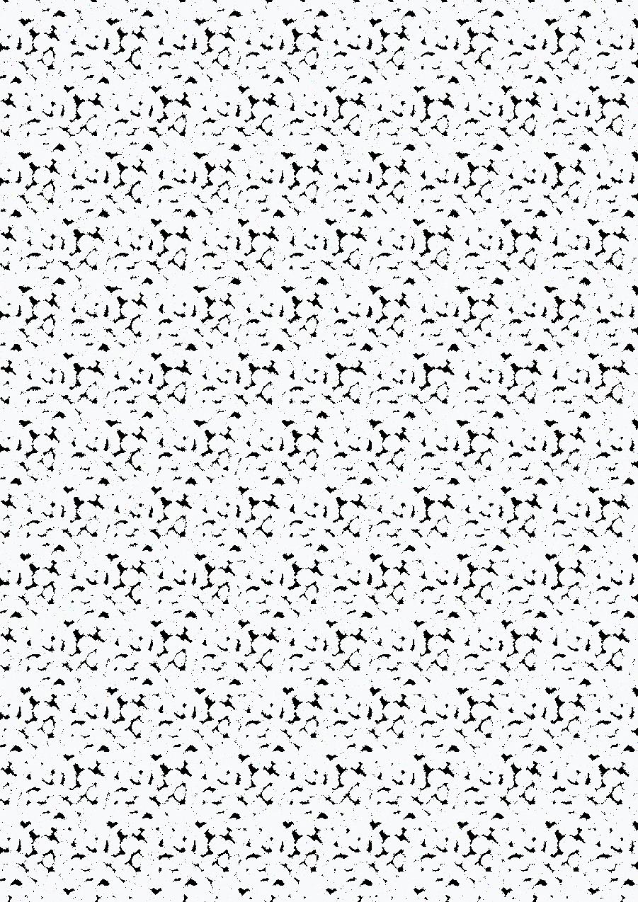 MOTIF_BLANC-01.png