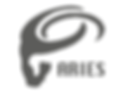 LOGO_TORRE_ARIES_DEFINITIVO_COLOR_FINAL-
