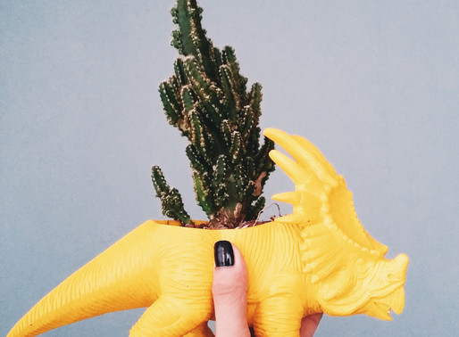 Operation Green Thumb (Part 2): Succulents & Dinosaurs
