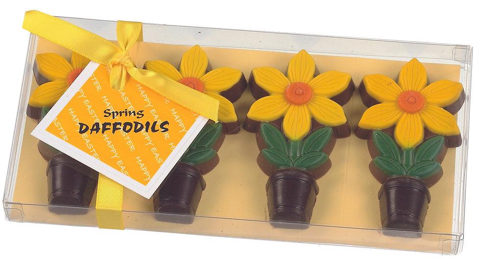 Chocolate Daffodils