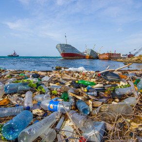 5-Minute Action: Plastic Free Petitions