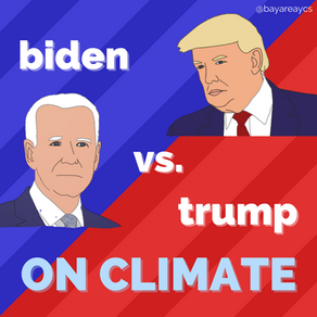 Climate Change & the Election